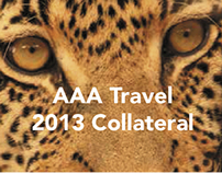 AAA Collateral 2013