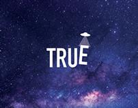 True - True Company