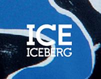 ICE ICEBERG P/E 2013