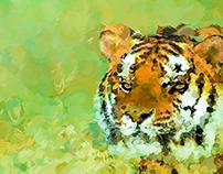 Animal India