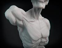 Мюнхенский торс, скульптинг