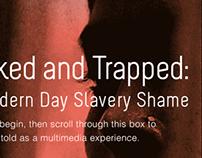 QUICK LOOK: India's Slave Trade - WordPress Parallax