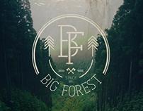 Logo, Identity & Web for Big Forest