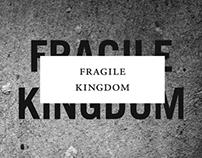Fragile Kingdom Book