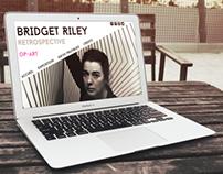 Bridget Riley Expo - Projet fictif