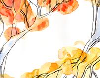 Fall promotions / Promozioni d'autunno