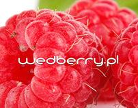 wedberry.pl