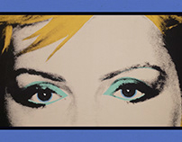 """Animación y montaje """"Warhol"""""""
