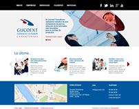 Página web de Gocoext
