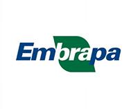 Logofolio | Embrapa