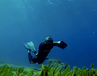 The Underwater Paradise of AQABA - 2014
