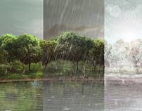 Weathering Landscape