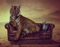Tiger Hour