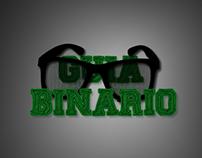 Guia Binario Web Site
