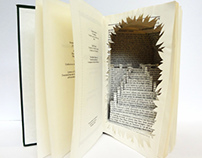 Book-Art collection