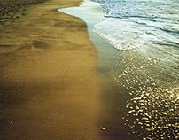 oceano mare,
