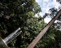 Miri Sarawak | Borneo