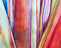 Closeup of canna plant stalks