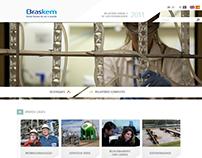 Webdesign - RA Braskem 2011