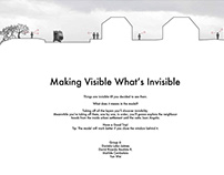 Making Visible What's Invisible