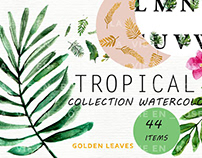 FREE Watercolor Tropical Illustrations