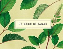 Le Erbe di Janas 2. // Illustrations