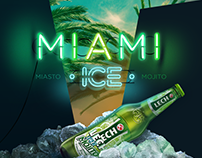 Lech ICE Mojito ® digital campaign 2013