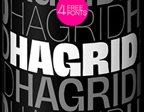HAGRID - A cryptotypographic wonder with 4 free fonts