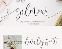 Gilmour Beautiful Calligraphy Font Free Download