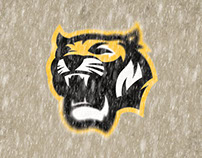 Reviving the Hamilton Tigers