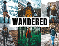 Free Wandered Mobile & Desktop Lightroom Preset