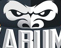 Logotipo KaBuM! IDM Team