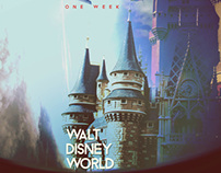 Walt Disney World - Into the Magic Project