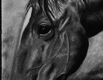 Horse - Progress shots