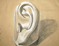 Study of an Ear