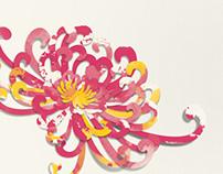 Chrysanthemum Art | 菊花 | Les Chrysanthèmes