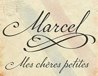 P22 Marcel Script Pro font