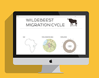 Wildebeest Migration Cycle - Infographic