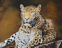 Leopard in Canvas