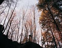 Land Art_Le vertige est le désire de tomber