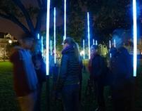 Luminous Forms