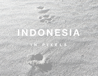 INDONESIA IN PIXELS