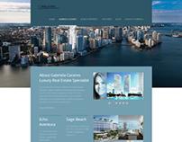 web site and blog development
