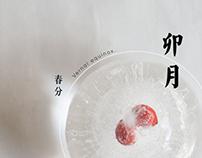 Chinese 24 Solar Terms Calendar