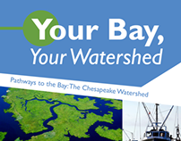 Your Bay, Your Watershed Brochure