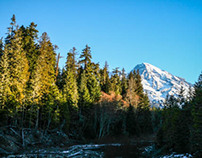 Mt. Rainier - Revisited