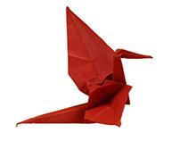 Origami Bookcover