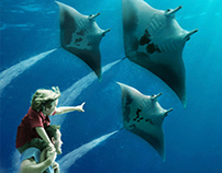 Georgia Aquarium Campaign