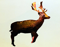 Monoprint : Animals