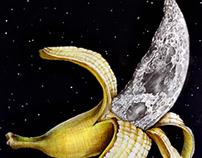 Planetary Produce
